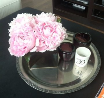 ~ Beautiful selection of peonies from my sisters garden. ~