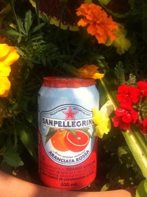 ~ Refreshing blood orange sparkling beverage ~