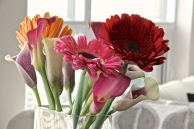 ~ Flowers are always a wonderful surprise ~