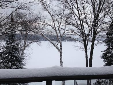 ~ Its a winter wonderland & I love it ~