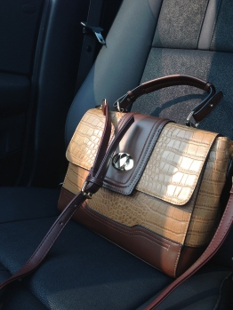 ~ New handbag from DSW ~
