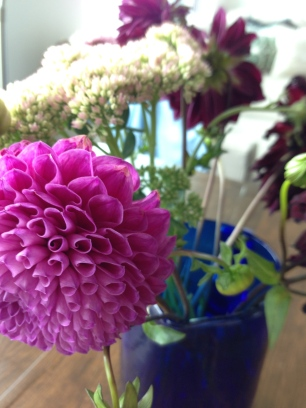 ~ Flowers are joy ~
