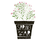 ~ Hello Spring ~